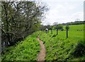 SE1961 : Nidderdale  Way  between  fence  and  River  Nidd  (2) by Martin Dawes