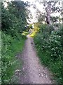 SZ0796 : Kinson: footpath E48 heads for Kitscroft Road by Chris Downer