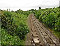 ST0209 : Exeter to Taunton main line by Roger Cornfoot