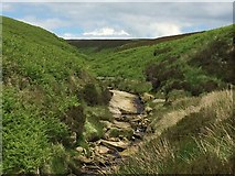 SD9635 : Dry 'waterfall', Walshaw Dean by John Darch