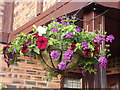 SH8076 : Hanging basket by Richard Hoare