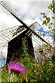 SP9415 : Pitstone Windmill by Steve Daniels