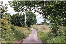 TG1022 : Furze Lane by J.Hannan-Briggs