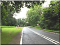 TL8978 : Entering Euston on the A1088 Thetford Road by Adrian Cable