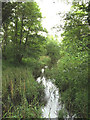 TL8980 : Little Ouse River off the A1088 Thetford Road by Adrian Cable