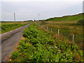 NM3819 : Road to Uisken by Mick Garratt