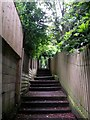 SZ0691 : Westbourne: ascending footpath A03 by Chris Downer
