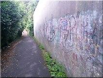 SZ0795 : East Howe: graffiti on footpath U38 by Chris Downer