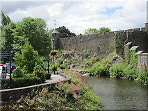 S0524 : Cahir Castle and a branch of the River Suir by Jonathan Thacker
