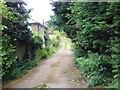 TQ8461 : Hayes Lane, near Stockbury by Chris Whippet