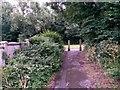 SZ0696 : Kinson: footpath E23 arrives on Wimborne Road by Chris Downer