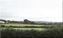 J3633 : Hayfields on the east side of the A50 by Eric Jones