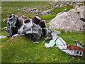 SH6963 : Bristol Mercury Radial Engine, Cwm Eigiau by Chris Andrews