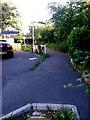 SZ0992 : Springbourne: footpath C22 from Ophir Gardens by Chris Downer