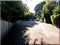 SZ0992 : Malmesbury Park: footpath C18 meets Portchester Road from Ascham Road by Chris Downer
