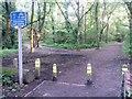 SZ0794 : Talbot Village: Slades Lane enters the woods by Chris Downer