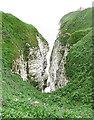 TA1974 : Gully at Bempton Cliffs by Anne Burgess