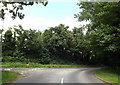 TL9483 : West Harling Road, Brettenham by Adrian Cable