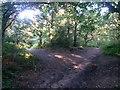 SZ0794 : Talbot Village: footpaths N14 and N15 meet by Chris Downer