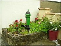 R7544 : Pallas Green village pump by Antony Dixon