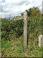 TL9484 : Peddars Way Footpath sign off Kilverstone Road by Adrian Cable