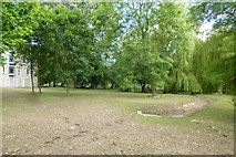 SE6250 : Reseeded area by DS Pugh