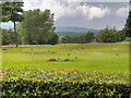 SD5908 : Haigh Hall Golf Complex by David Dixon