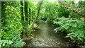 SO2923 : River Honddu at Neuadd, 1 by Jonathan Billinger
