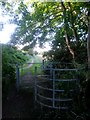 SZ0795 : East Howe: kissing gate on footpath E34 by Chris Downer