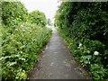 TA1131 : Hornsea Rail Trail #2 by Steve  Fareham