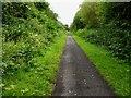 TA1437 : Hornsea Rail Trail #9 by Steve  Fareham