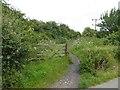 TA1638 : Hornsea Rail Trail #13 by Steve  Fareham