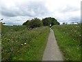 TA1843 : Hornsea Rail Trail #20 by Steve  Fareham