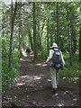 NY9269 : Hadrian's Wall Trail near High Brunton by Karl and Ali
