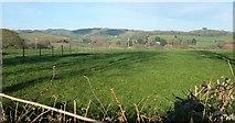 SY4797 : Farmland, Waytown by Derek Harper