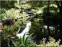 TR0660 : The Rock Garden at Mount Ephraim Gardens by Marathon