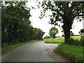 TM0280 : Blo' Norton Road, Blo Norton by Adrian Cable
