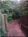 SZ0895 : Redhill: footpath O12 reaches the common by Chris Downer