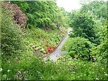 NT9953 : Castle Vale Park [1] by Michael Dibb
