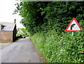 SO5719 : Warning sign in a Goodrich hedge by Jaggery
