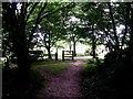 SZ1095 : Muscliff: footpath M17 reaches bridleway M18 by Chris Downer