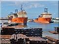 TA0927 : Albert Dock, Kingston upon Hull by Bernard Sharp