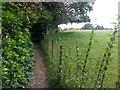 SZ0794 : Talbot Village: footpath N10 alongside a field by Chris Downer