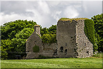 N0626 : Castles of Leinster: Clonlyon, Co. Offaly (2) by Mike Searle
