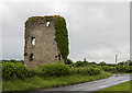 N7061 : Castles of Leinster: Fraine, Co. Meath (1) by Mike Searle