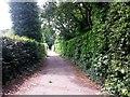 SZ0793 : Talbot Village: footpath N38 approaches Wallisdown Road by Chris Downer