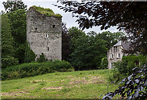 S7992 : Castles of Leinster: Moone, Co. Kildare (1) by Mike Searle