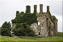 N6835 : Castles of Leinster: Carbury, Co. Kildare (revisited) (1) by Mike Searle