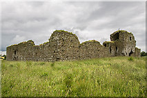 S7361 : Castles of Leinster: Ballymoon, Co. Carlow (2) by Mike Searle