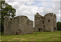 S7458 : Castles of Leinster: Ballyloughan, Co. Carlow (3) by Mike Searle